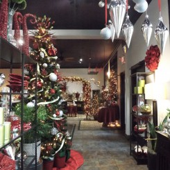 Floral and Christmas displays