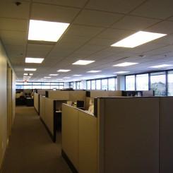 Open design maximizes daylight