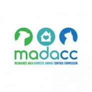 madacc logo for blog